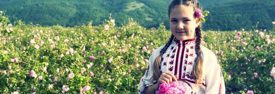 sl-rose-2-e1447842830779
